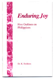 Enduring Joy